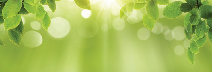 PP_Blog_May_Going-Green