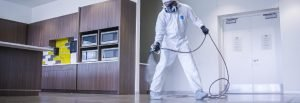 Spray Disinfectant For Paint Companies