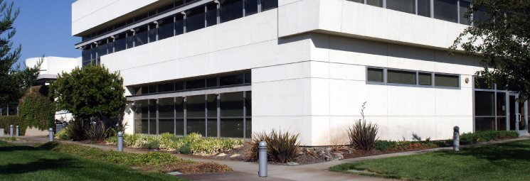 commercial painting services for businesses
